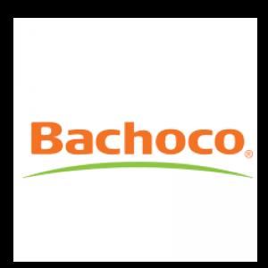 3-bachoco